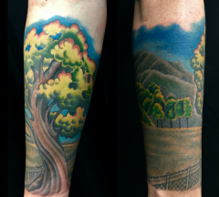 Forearm tree sequence