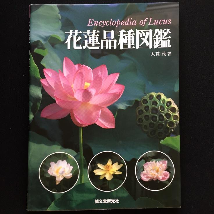 clareketon_tattoo_lotus