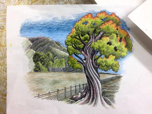 clareketontattoos_wip_tree_tattoo_sketch