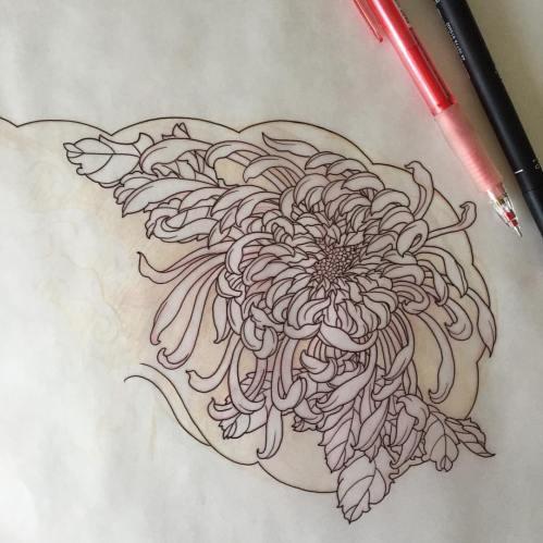 clareketontattoos_wip_stencil_chrysanthemum